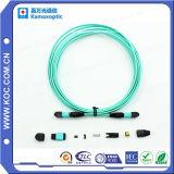 Treccia del cavo E2000 della fibra