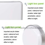 Double Sided Vacuum Forming Light Box plastique