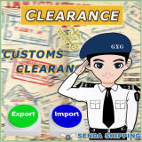 Servicio Global de Transporte de Carga Especial