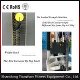Strumentazione di addestramento professionale del muscolo/macchina addominale