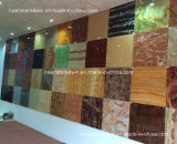 장식적인 아크릴 벽면, 가짜 백색 대리석 장, 박테리아 인공적인 돌 없음