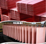 Elektrolytisches Kupfer geklebter fester Bodenstahlrod