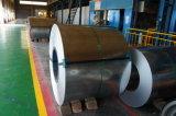 Rolo de aço galvanizado (DX51D)