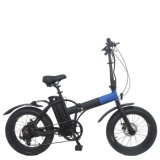 "20 "" fettes Tire 250W Folding Electric Bike (TDN01Z-)"