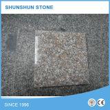Lastra del granito G648 per i controsoffitti/parti superiori della cucina/parti superiori di vanità