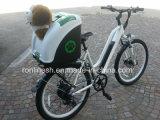 """[250و] أو [500و] يزوّد درّاجة كهربائيّة/كهربائيّة [بيسكل/] درّاجة/[بدلك] مع 26 """" [إكس] 2.3 أو [24إكس] [4تير], يخفى بطارية, [س], [إن15194]"""