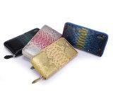 Handgemachte Form Reißverschluss zugemachte Schliessen-Mappen-Pythonschlange Snakeskin Dame 100% Purse