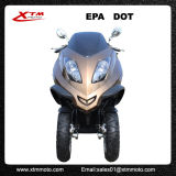 300cc 도로 법적인 EPA 세륨 성인은 Trike 스쿠터를 위로 서 있다