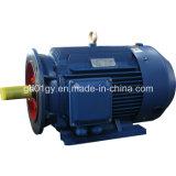 Un motore elettrico a velocità diverse variabile di 3 fasi del Palo di vibrazione di serie bassa della iarda