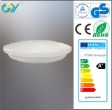 Hohe Leistung Lumen 22W 1400lm 350mm LED Ceiling Light