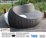 최신 디자인 등나무 방석을%s 가진 옥외 가구 두 배 로비