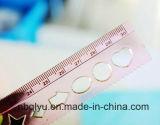 Girls를 위한 학생 Ruler 15cm-30cm년 Folding Rule