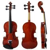 Sinomusik Glanz-Ende-Gold, das feste Kursteilnehmer-Violine mit BV/SGS Bescheinigung bindet