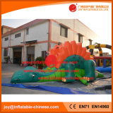 Игрушка скольжения PVC изготовлений игрушки скольжения Китая раздувная (T4-700)