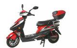 Горячий мотоцикл самоката мотовелосипеда мотора 800watt сбывания электрический (HD800-YY)
