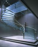 Arco de vidro/escadaria curvada com o passo de vidro dos trilhos de vidro para a decoração Home