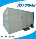 Qualitäts-Kühlraum-Schlussteil für Verkauf