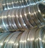 Fil d'acier ovale galvanisé à haute résistance