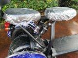 motorino della rotella di Harley 3 della sospensione della parte posteriore della parte anteriore 1000W60V nuovo