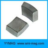 Подгонянный магнит кривого дуги неодимия для энергии мотора магнита свободно