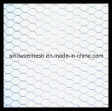 Vinyl Coated Hexagonal Wire Mesh/Hexagonal Wire Netting