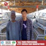 De Gegalvaniseerde Kooi van de Landbouwbedrijven van het gevogelte voor de Kooi van de Vogel van de Batterij met de Machine van Ventilator