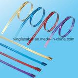 316 cintas plásticas do metal dos laços da escada do aço com revestimento