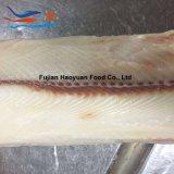 El filete congelado más nuevo del tiburón de los mariscos