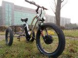 48V 500W 뚱뚱한 타이어 화물 세발자전거 3 바퀴 페달을%s 가진 전기 세발자전거 리튬 건전지 LCD 디스플레이