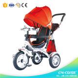 押し棒が付いている赤ん坊の幼児の三輪車
