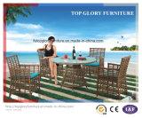Moderno ocio muebles al aire libre Rattan Jardín comedor de mimbre y sillas (TG-1303)