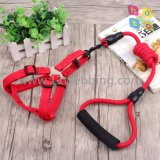 Nylon Rope Dog Pet Slip Training Leashes Collier de chien en toile