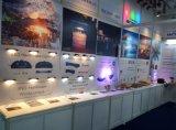 Landschaftsjobstep-Licht des 12V 3.5W Strahlungswinkel-justierbares wasserdichtes LED