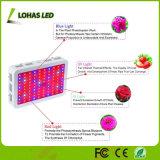 위원회 가득 차있는 스펙트럼 고성능 300W 450W 600W 800W 900W 수경법 LED는 플랜트를 위한 가벼운 장비를 증가한다