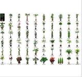 [ولّ سلّر] ينمو [هي بوور] [300و] [لد] خفيفة (نبتون 6 [سري])