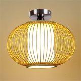 De Lamp van het plafond