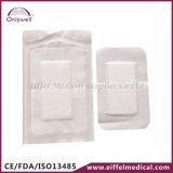 Fasciatura adesiva medica del pronto soccorso di Steriled