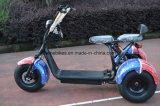 مصنع عمليّة بيع 2017 درّاجة ثلاثية جديدة كهربائيّة لأنّ شحن