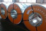 SPCC St12 ASTM A366 a laminé à froid la bobine en acier avec la qualité principale