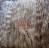 Estensione naturale dei capelli umani del Virgin
