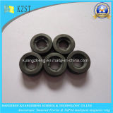 De aangepaste Ringen van de Motor van het Ferriet met Gesinterd Anisotroop Proces