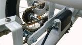 36V 250W Eの三輪車のリチウム電池の販売のための電気三輪車のElectiric 3の荷車引きのLED表示