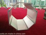 La sección grande modificada para requisitos particulares sacó los perfiles de aluminio