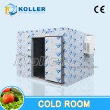 Caminhada no quarto frio do congelador para a pesca/carne/vegetal/gelo