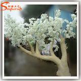 Albero artificiale di plastica del fiore di ciliegia della vetroresina decorativa domestica