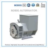 Generador Diesel 12.5kVA Con tecnología de China Yangdong motor