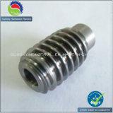 Шестерня высокой точности микро-/миниая глиста, шестерня глиста DC/AC латунная