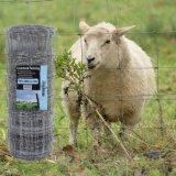 Горячая окунутая гальванизированная загородка ячеистой сети поля 1.5m сплетенная суставным сочленением для овец и козочки