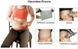 Vacío Frezzing gordo de las manetas del Portable 2 que adelgaza el equipo de la belleza de Cryolipolysis