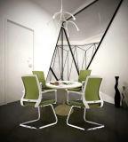 현대 다채로운 쌓을수 있는 형식 의자 학교 훈련 의자 & 회의 의자 & 식사 의자